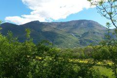 Grand-colombier-depuis-ceyzerieu-scaled